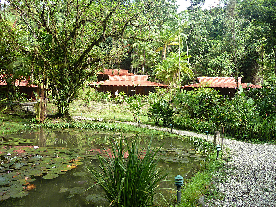 Esquinas Rainforest Lodge, Costa Rica