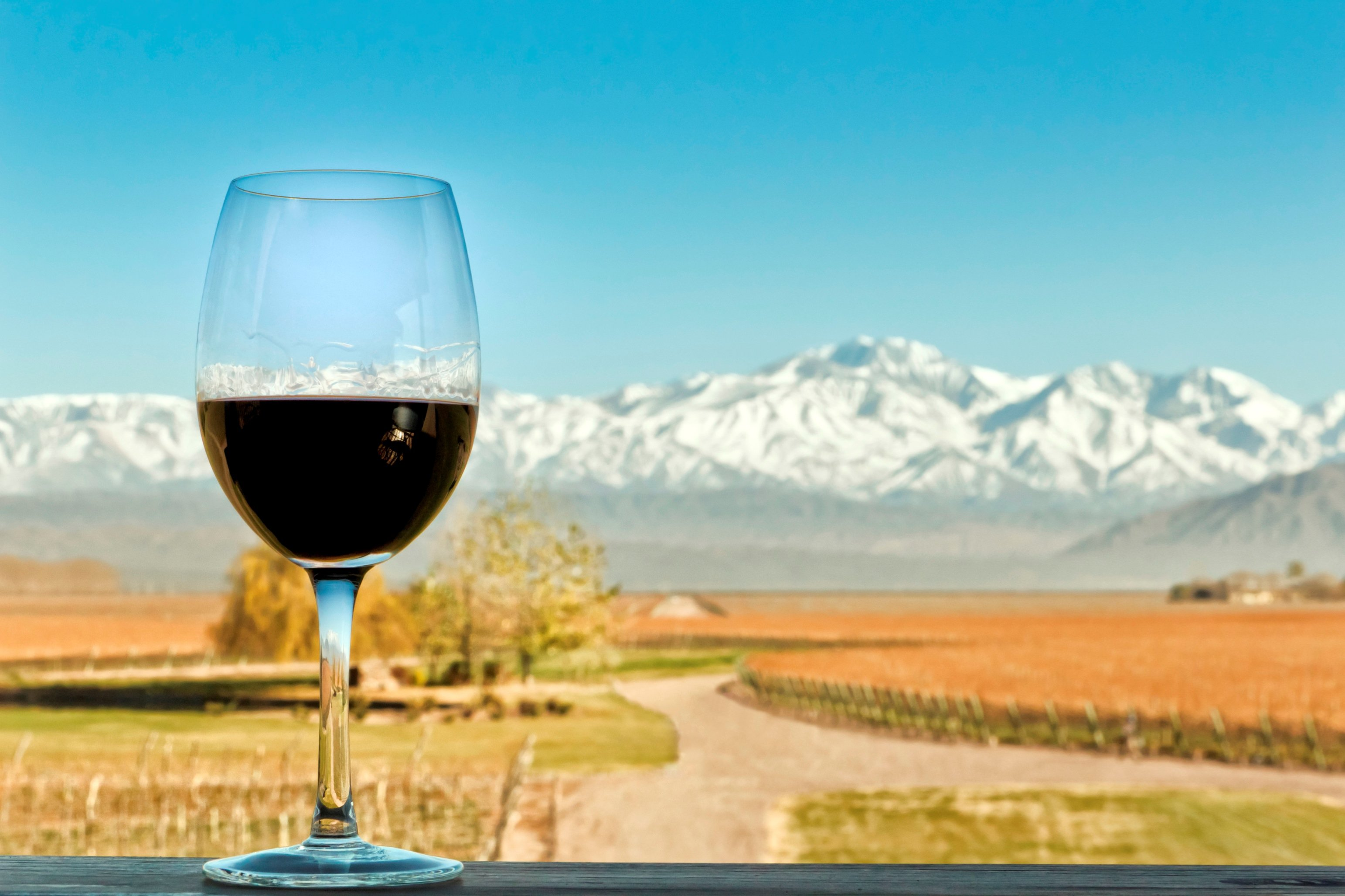 Malbec and mountains in Argentina