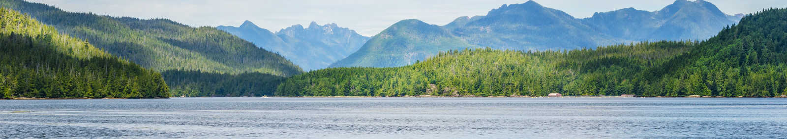 The landscape near Tofino, Vancouver Island