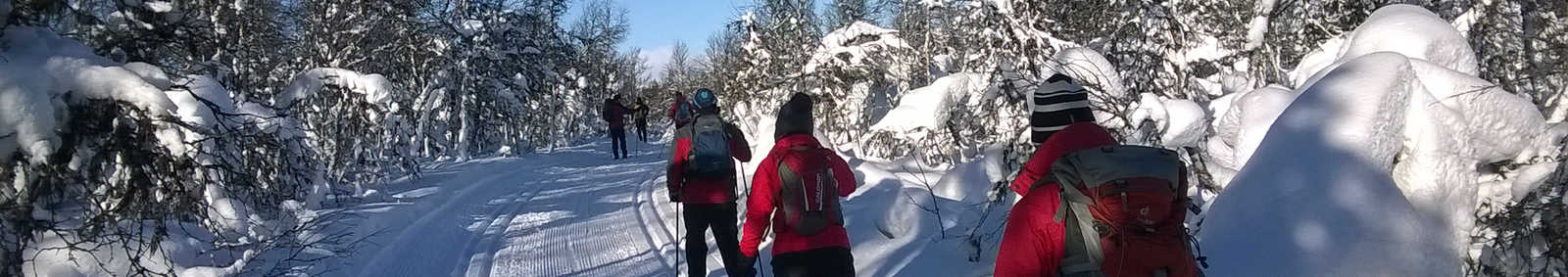 Cross-country skiing in Trimloipe in Venabu mountains