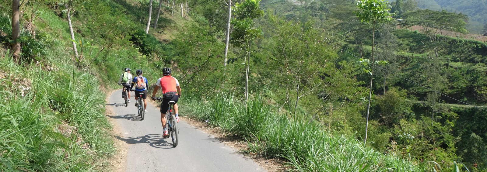 Cycling through Bali's mountainous interior