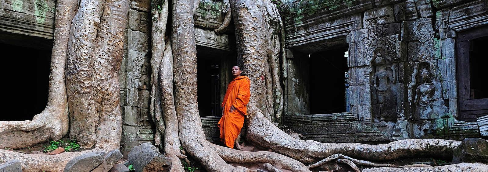 Cambodia in Angkor Ta Prohm Temple