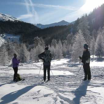 Day 2 Obernberg valley Off track skiing - SatNav anyone?