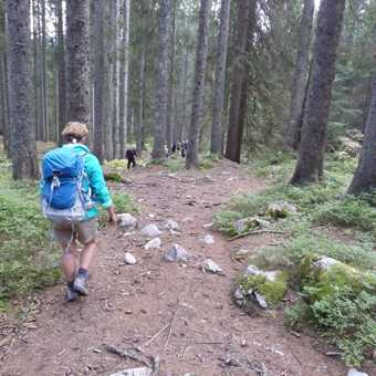 Day 6 - Inga walks down the last few hundred metres before our walk is over