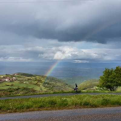 Rainbow MSM