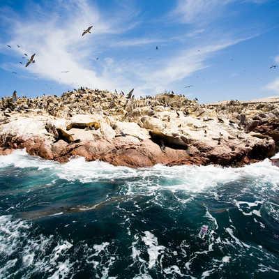 Ballestas Islands, near Paracas, South America