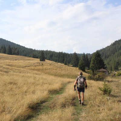 The Rodopi Mountains, Bulgaria
