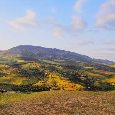 Landscape of Middle Atlas Mountains