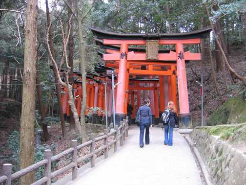 Entering the 'tunnel' of Shinto gates