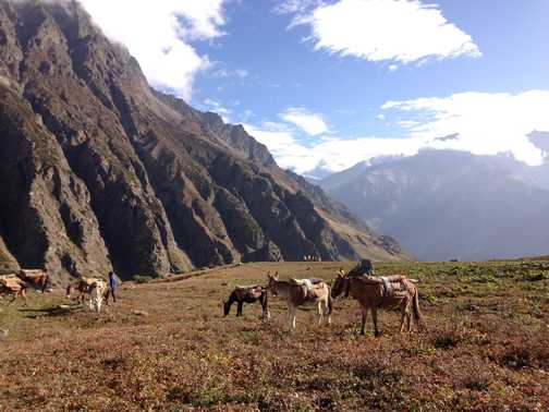 Nanda Devi East base camp area