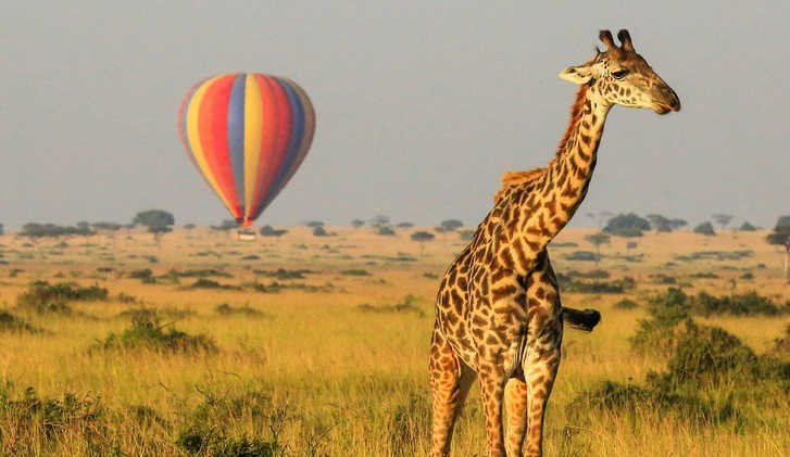 Hot air balloon ride over Masai Mara, Kenya